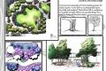 landscape-design-011