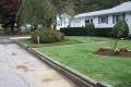 plantings-004