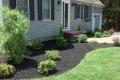 plantings-012