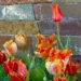 Rhode Island Hardscaping Solutions for Commercial Properties