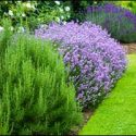 Make an Appointment Now for Commercial Rhode Island Landscape