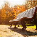 Rhode Island Commercial Landscaping Services for Fall Season