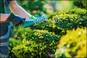commercial landscaping in northern rhode island