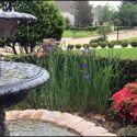 Glocester Hardscaping Design: Commercial Water Feature Ideas