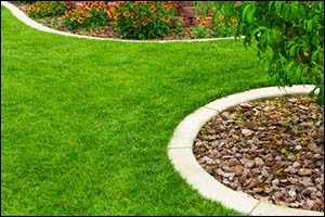 Low Maintenance Landscaping Warwick