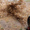 Seasonal Landscape Maintenance Services: Fall in Rhode Island