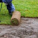 Sod & Seed for Spring: Commercial Landscape in Rhode Island