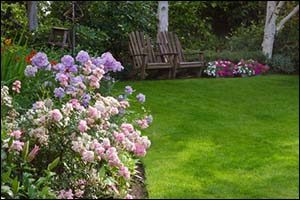 Summer Lawn Care in North Providence