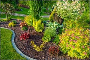 Summertime Landscaping Services