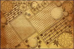 Landscape Designer Plans